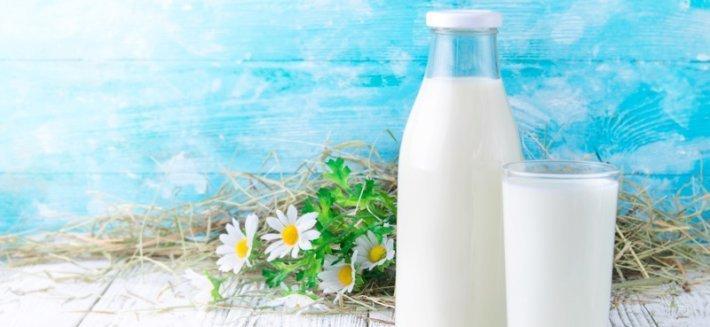 Latte Biologico: nutriente e sicuro per una vita sana