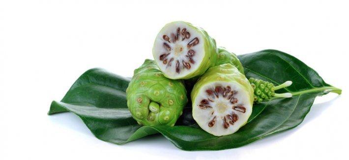Noni: un succo antiossidante dalle virtù officinali