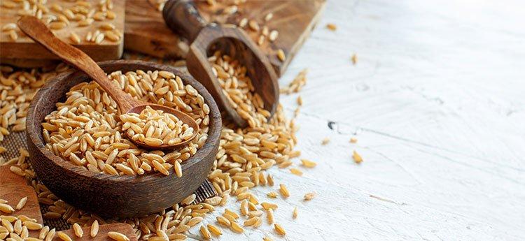 Grano Khorasan: Coltivazione, Proprietà e Caratteristiche Nutrizionali