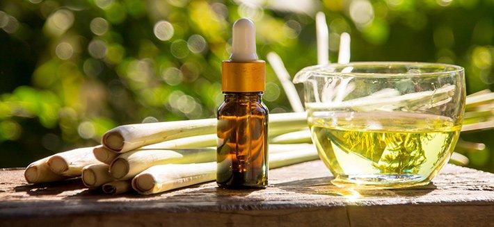 La citronella è una pianta dal potere repellente, ma è anche un potente antisettico naturale