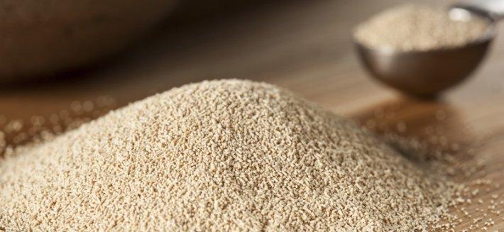 Lievito di birra: fermentazione e non solo