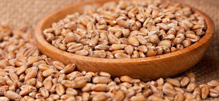 Malto di mais: un dolce sostituito dello zucchero