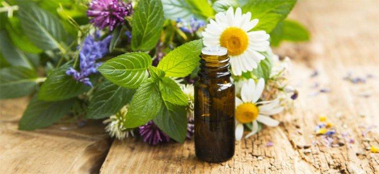 L'olio 31 sfrutta i benefici combinati di estratti naturali per risolvere diversi problemi o fastidi