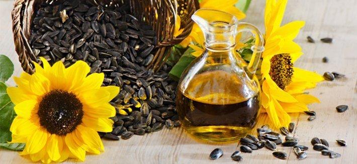 Olio di girasole: la salute in cucina e sulla pelle
