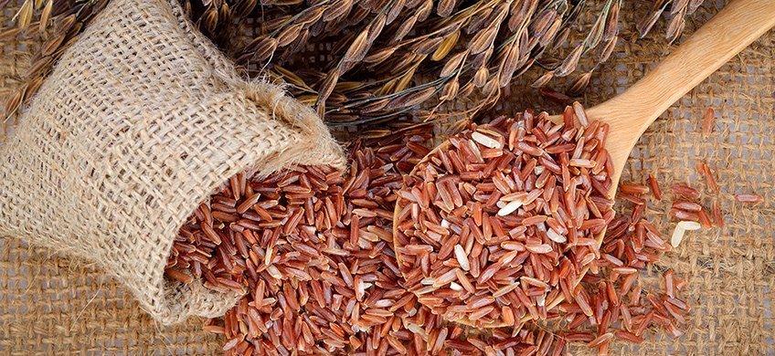 Riso Rosso fermentato: un alleato contro il colesterolo