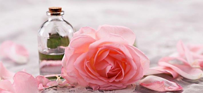Rosa damascena: il benessere dall'Oriente