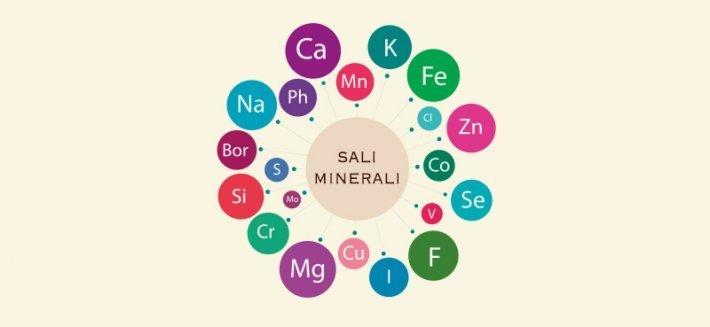 I Sali Minerali: Elementi indispensabili per il nostro organismo