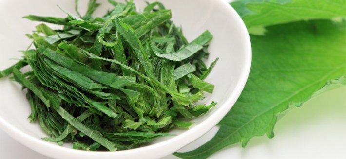 Shiso: un benefico condimento orientale