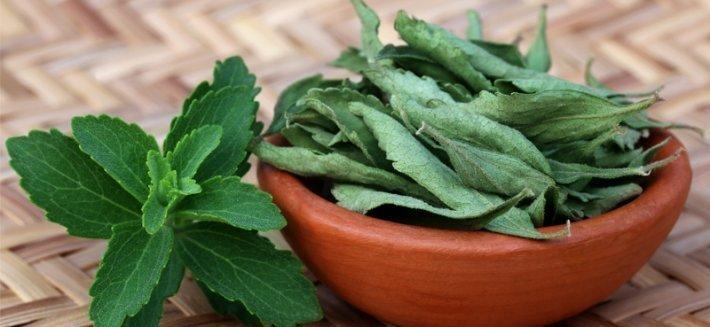 Prevenzione e Salute con la Stevia
