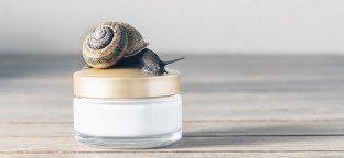 Crema bava di lumaca: i 10 segreti di un elisir di bellezza per la tua pelle