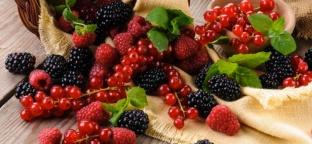 Frutti di Bosco: salute, benessere e bontà