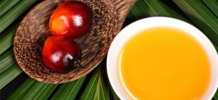 Olio di palma: tutti i dubbi e le risposte (parte 2 di 2)