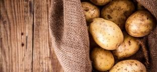 Patate: un semplice ingrediente, tantissime ricette