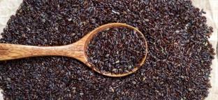 Psillio: da rimedio curativo a ingrediente di cucina